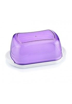 031229 HOBBY BUTTER / CHEESE DISH